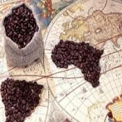 Dünya Kahveleri (10)